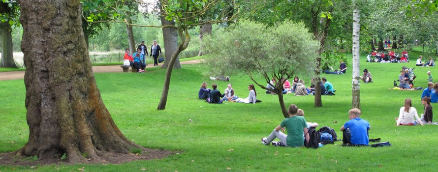 College Students in a park